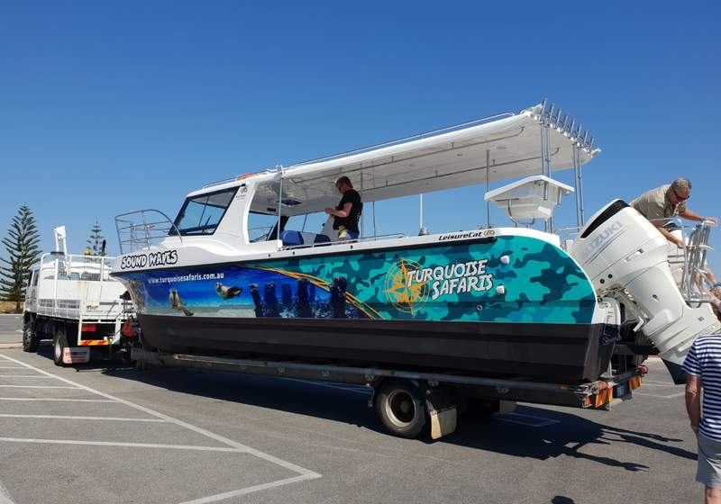 Sea Lion Tour with Optional Snorkeling Experience at Jurien