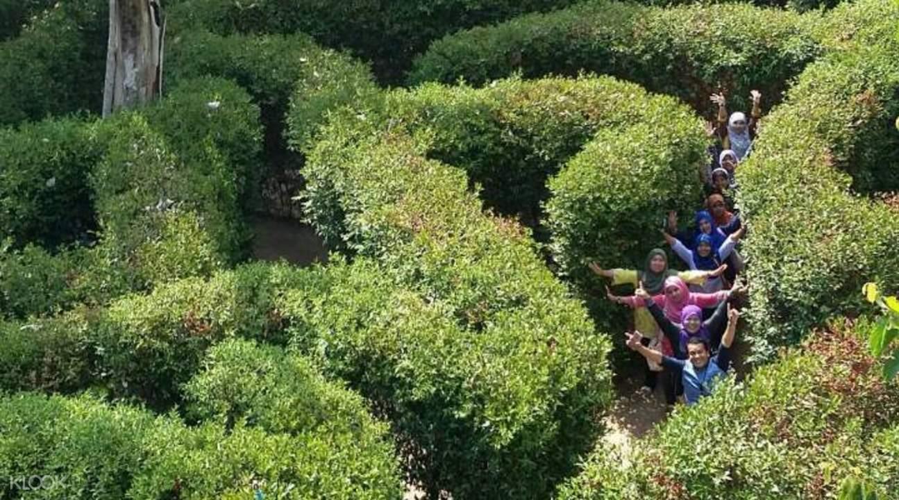 布吉岛颠倒屋 & 花园迷宫