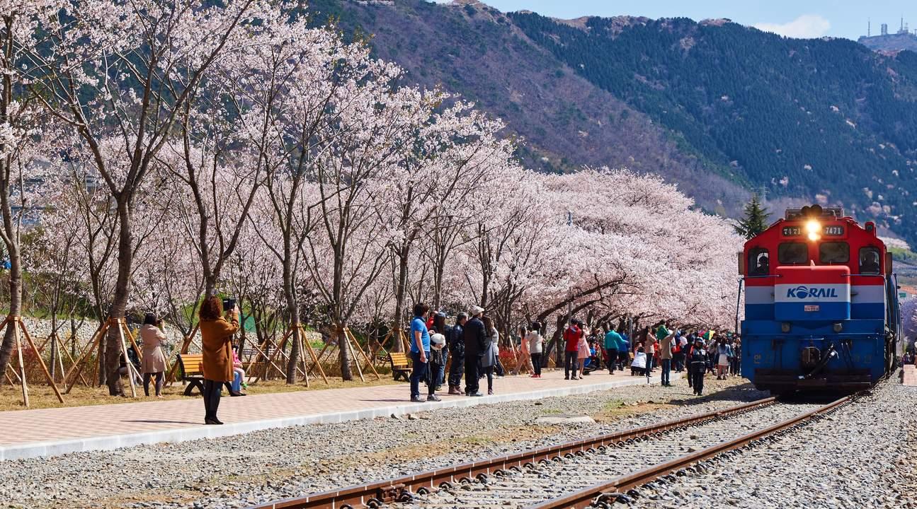 韩国桌面风景图片