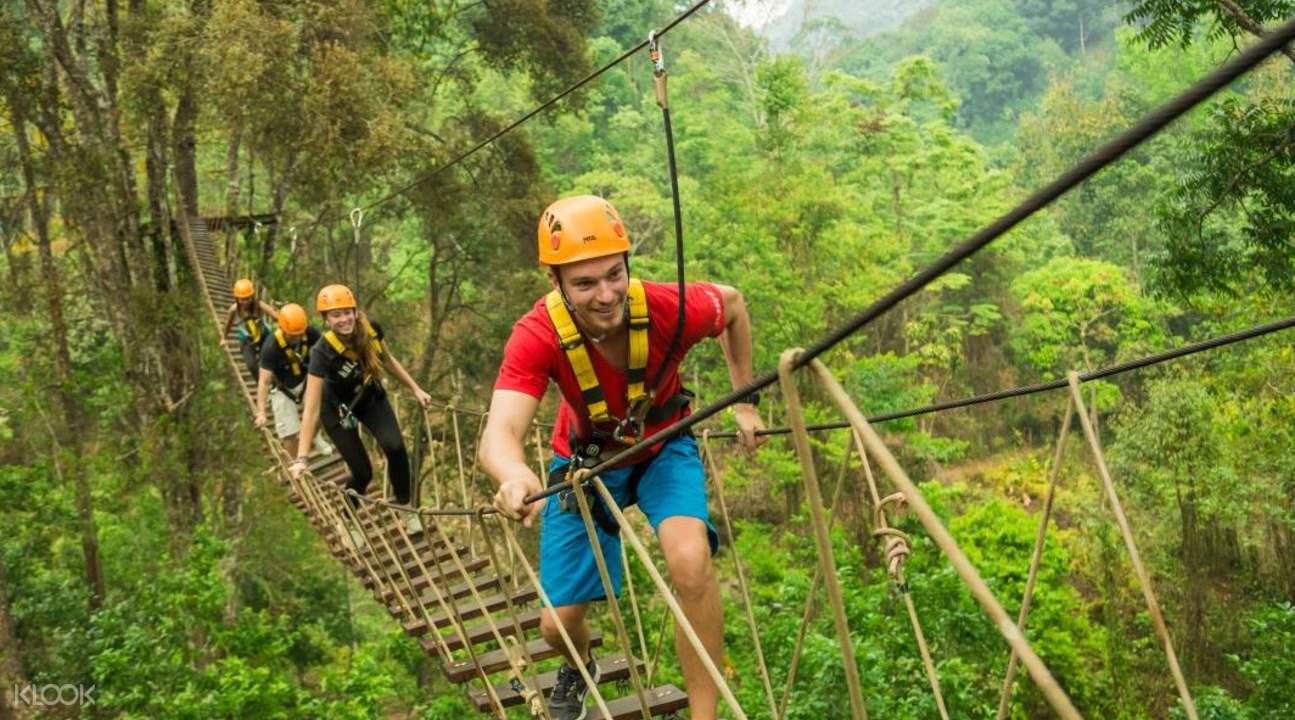 你可以像人猿泰山一般在55个观景平台间飞翔,行走在高空吊桥和丛林图片