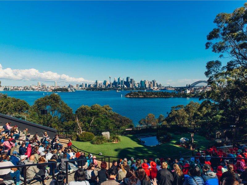 以雪梨海港風光為背景,坐在看台上觀看可愛的動物表演。(圖片來源/httpsgoo.glDDYUw6)