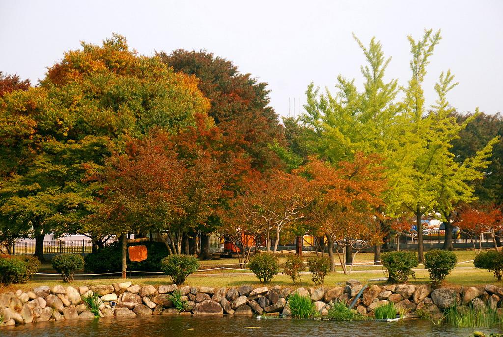 慶 州 大 陵 苑 。