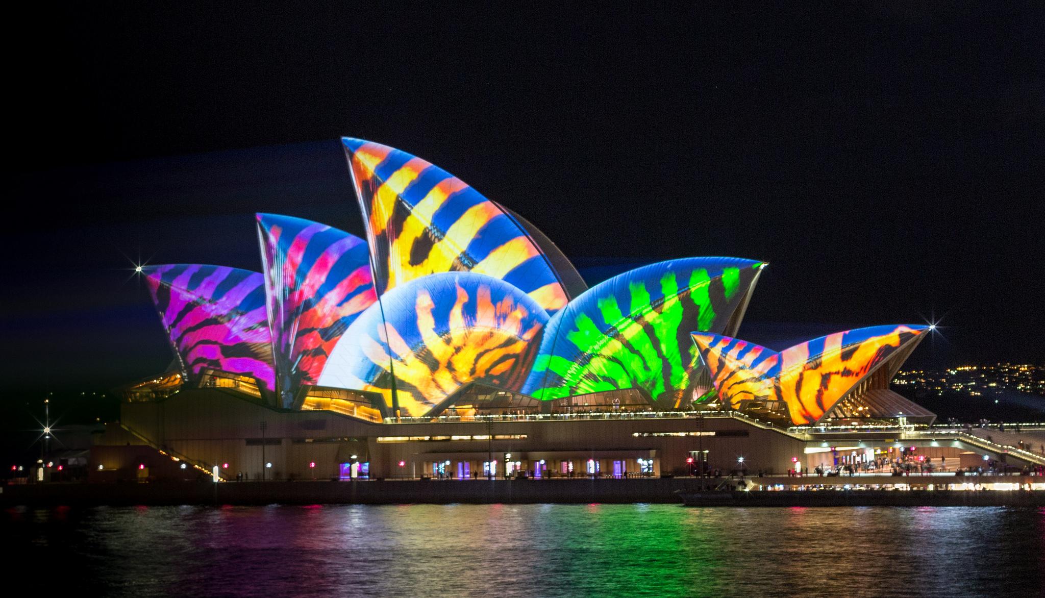 每逢繽紛「雪梨燈光音樂節」,歌劇院都會有精彩的燈光秀表演。(Flickr授權作者-Ashley)
