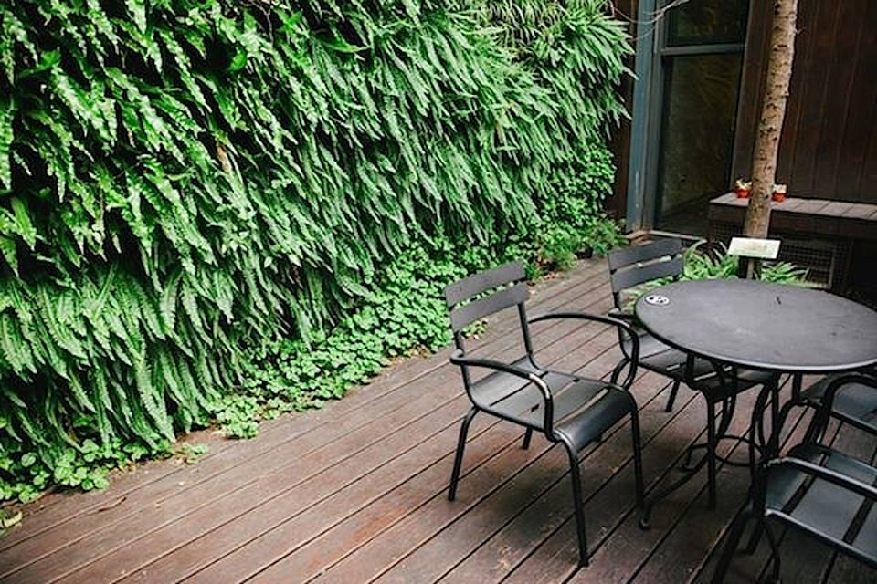 戶 外 座 外 被 綠 色 植 物 包 圍 , 享 用一 杯 咖 啡也 可 以 很 樂 活 ! 圖 片來 源 : 統 一 星 巴克 咖 啡 同 好 會 。