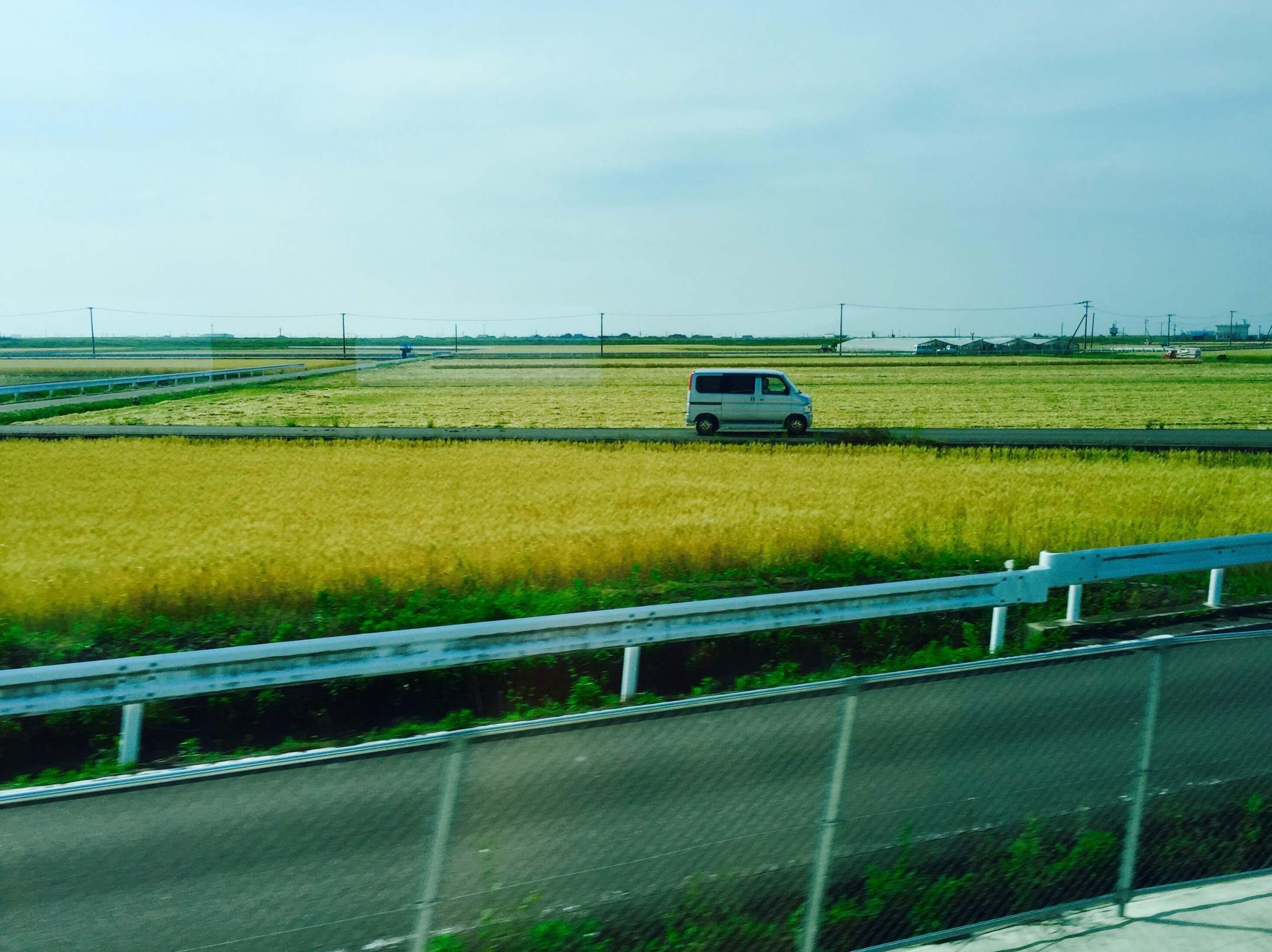 沿路上經過佐賀的農田。