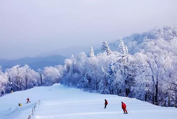 亞洲滑雪場精選