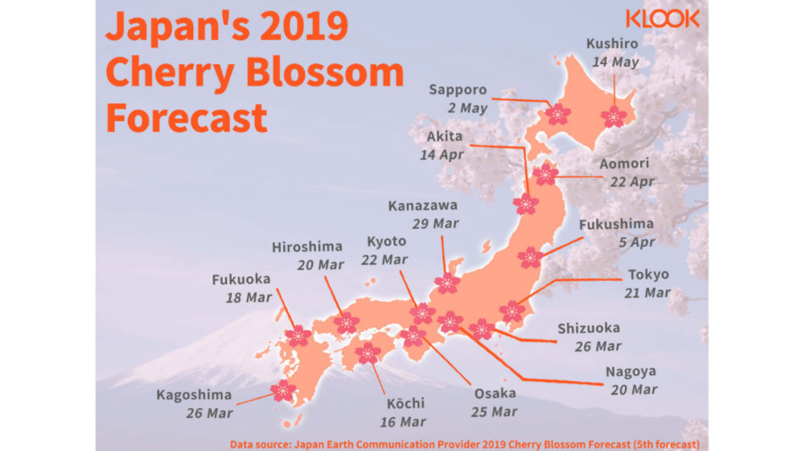 Your Japan Cherry Blossom Chase In 7/14/21 Days With The