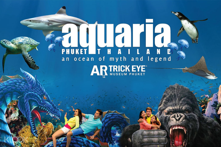 "Image result for aquaria phuket"""