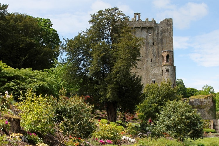 Find a group in Thurles - Meetup
