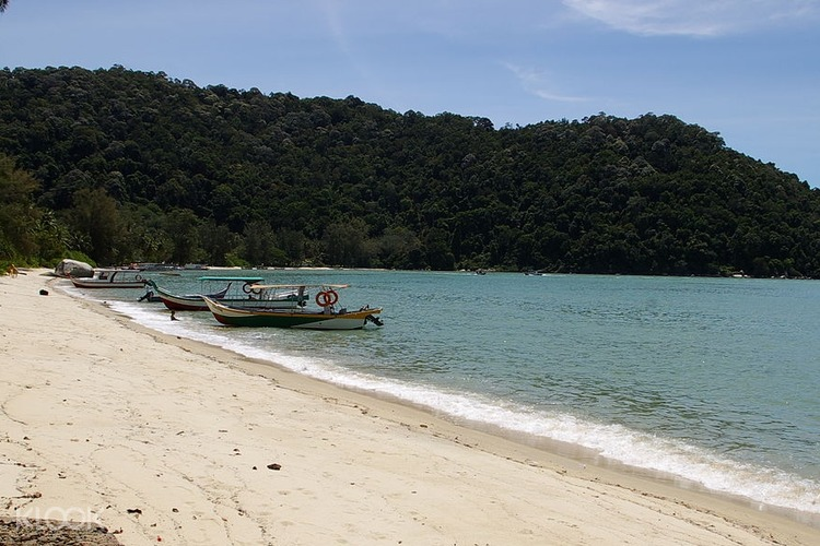 Monkey Beach Tour From Penang Malaysia