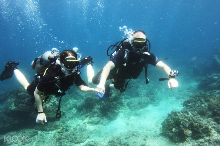 Fun Diving Experience In Bali Indonesia Klook Us