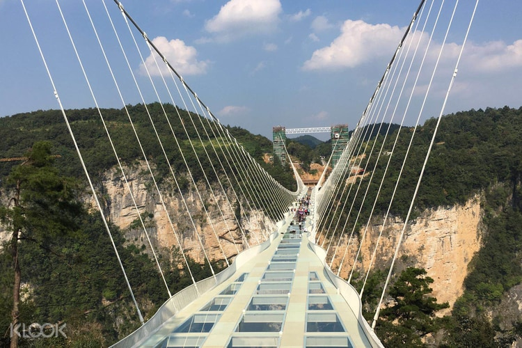 Zhangjiajie Grand Canyon And Glass Bridge Discount Tickets