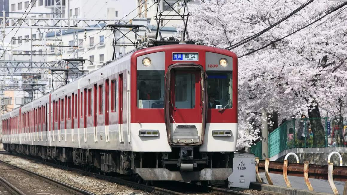 Kintetsu Rail Pass: Explore Osaka, Kyoto, Nagoya and Nara