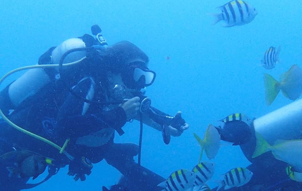 東北鼻頭角潛水體驗