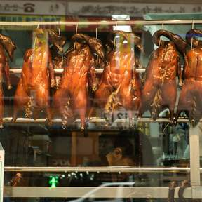 Ki's Roasted Goose Restaurant in Wan Chai, Tin Hau, and Causeway Bay
