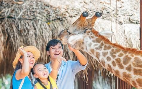 [TẶNG VOUCHER ĂN] Vé Vinpearl Safari Phú Quốc