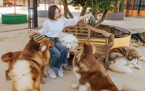 Vé Tham Quan Nông Trại Cún tại Đà Lạt