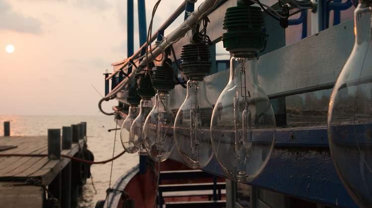 【每日限量79折】澎湖夜釣小管體驗(馬公港/赤崁港)