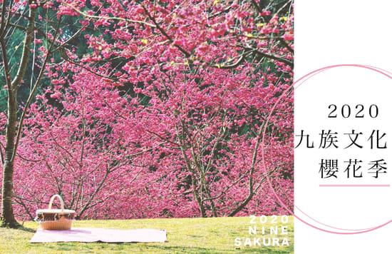九族櫻花季cover