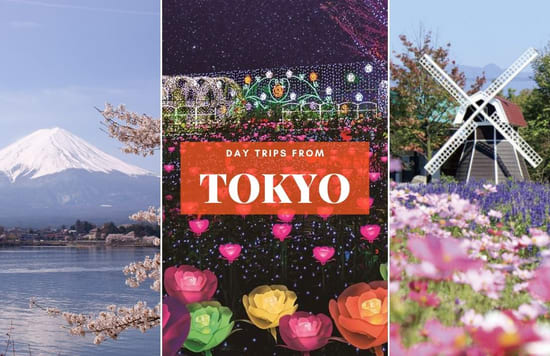 Tokyo Day Trips 14