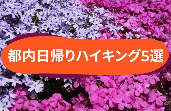 初心者も安心・東京から日帰り&電車で行けるハイキングコース5選 [登山&トレッキングもおすすめ]