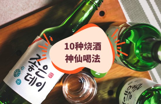 10种烧酒喝法