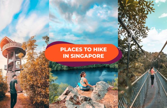 hiking in singapore trails