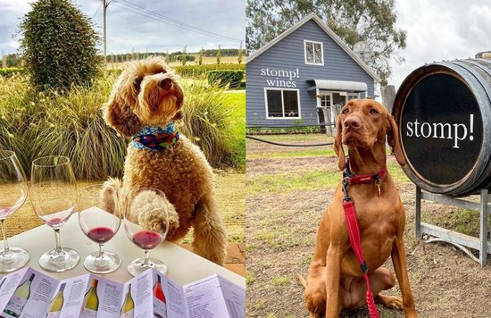 pet friendly wineries in hunter valley