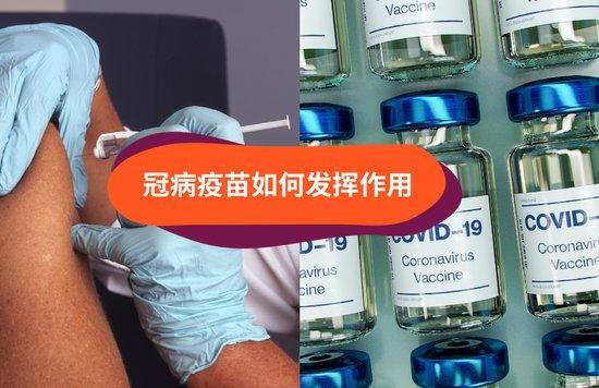 冠病疫苗如何发挥作用