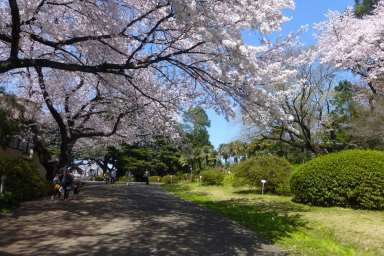 koshikawa korakuen