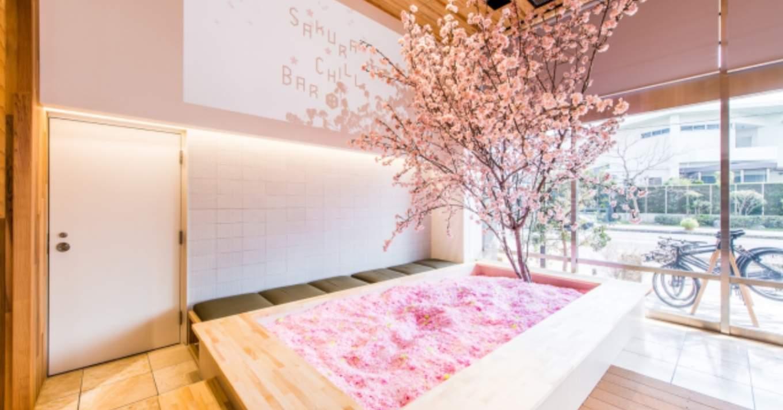 Cherry Blossom Bar Tokyo 1