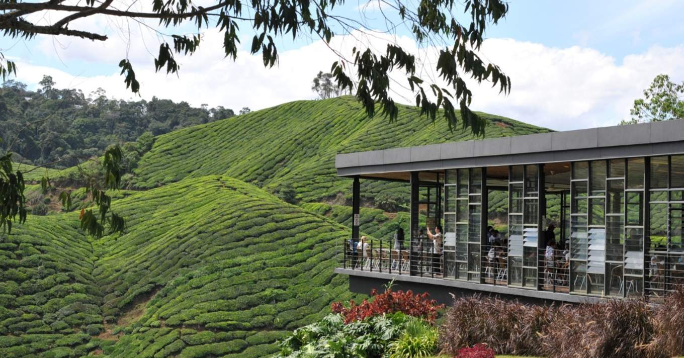 10 Budget Hotels And Accommodation In Cameron Highlands For A Long Weekend Trip - Klook Travel Blog