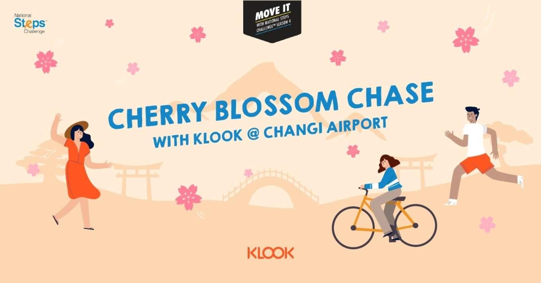Cherry Blossom Chase