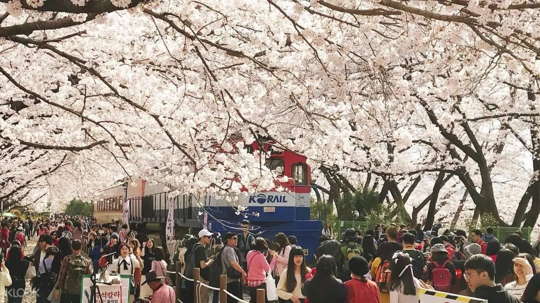 Korea March Round Up