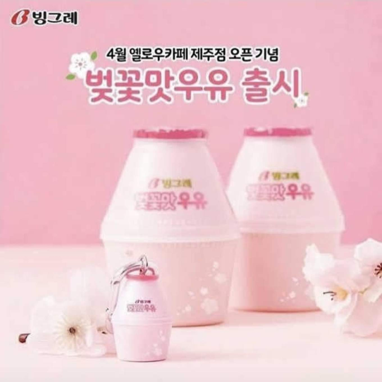cherry blossom milk