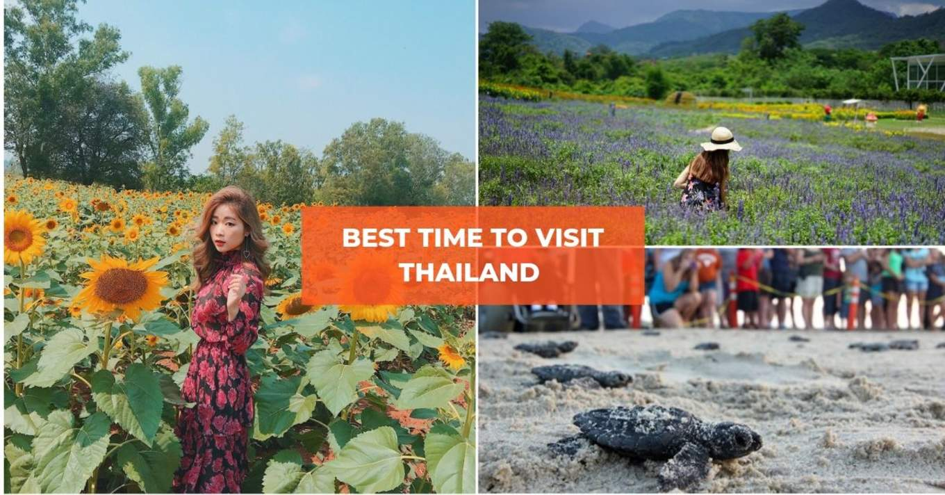 best time to visit thailand 13
