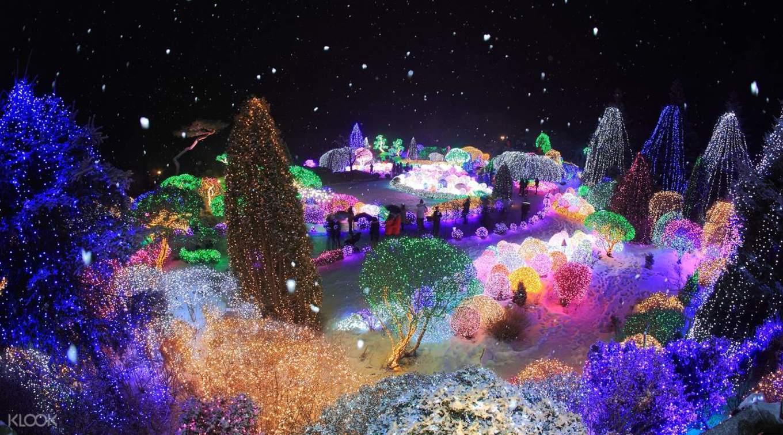 korea-winter-gems-nami