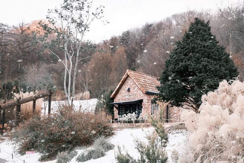 korea-winter-gems-garden-morning-calm