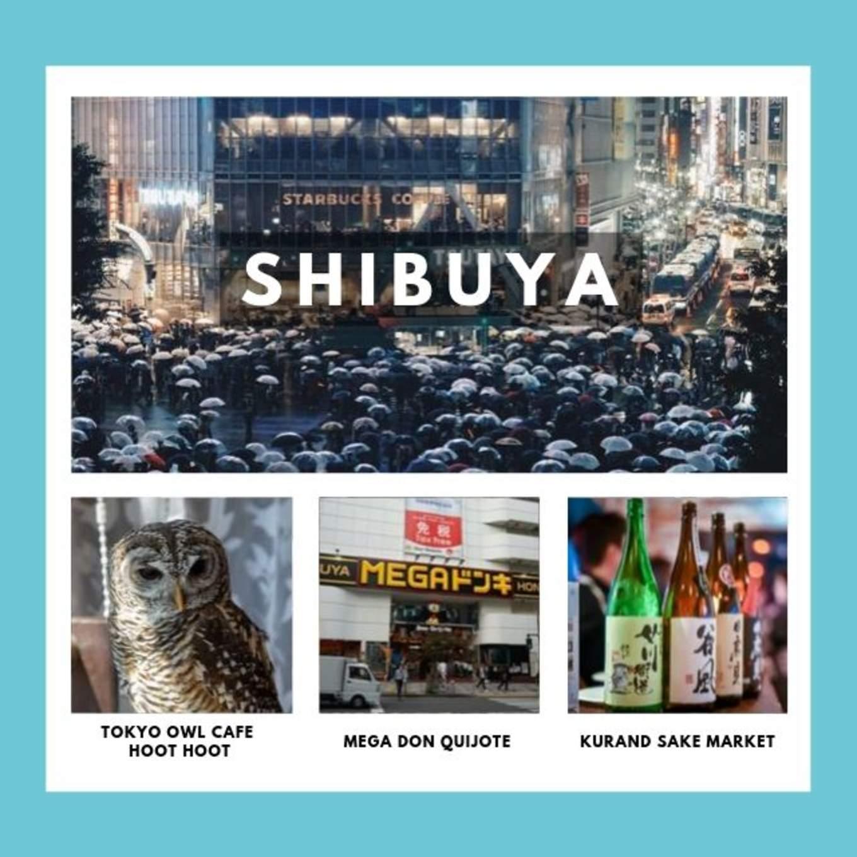 tokyo-subway-guide-station-shibuya