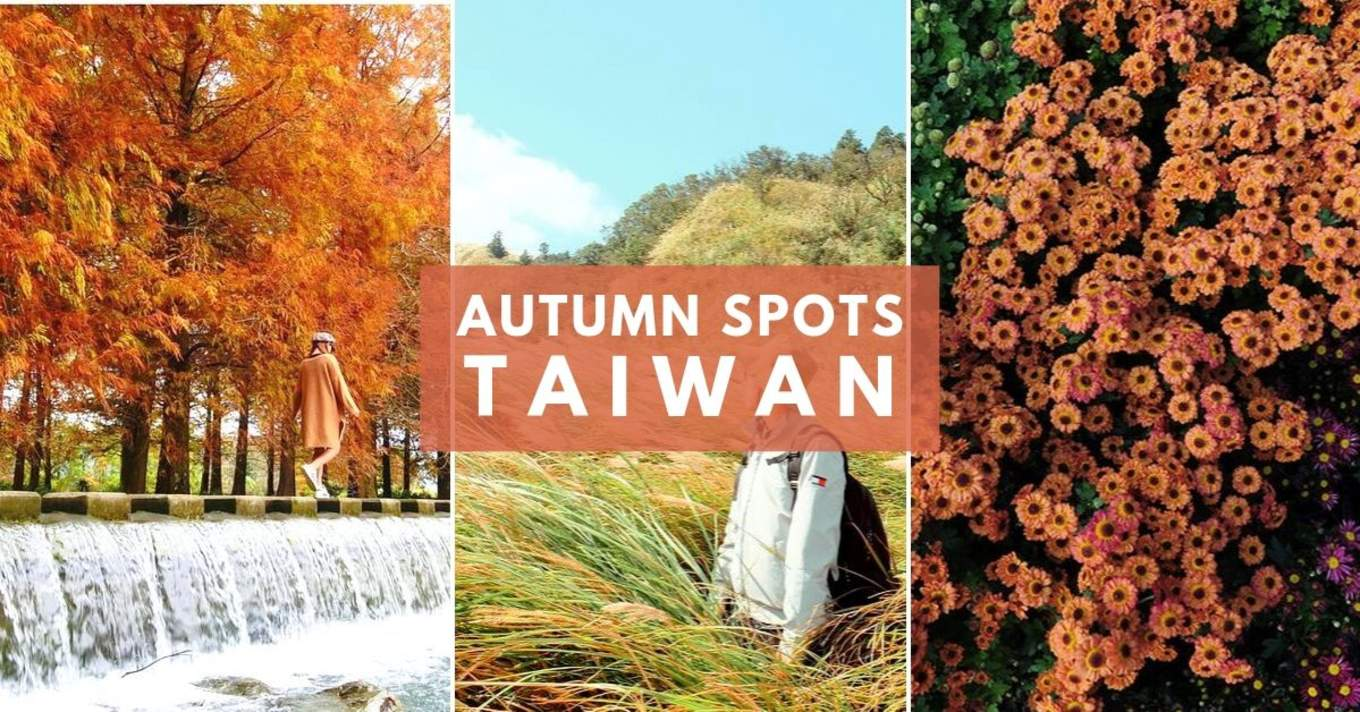 taiwan autumn cover image