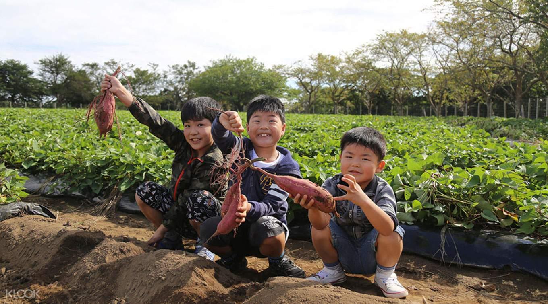 under-20-tokyo-chiba-mother-farm