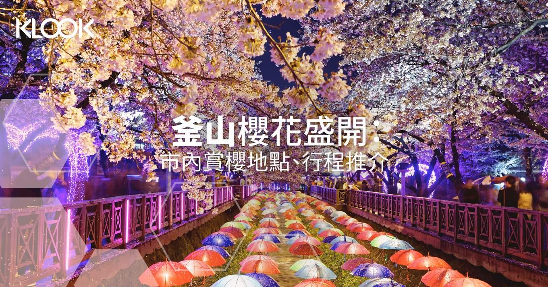 190220 Blog cover cherry blossom6