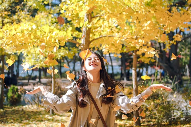 Korea di Musim Gugur