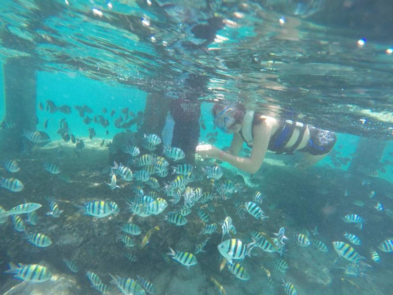 巴里卡薩島浮潛景象|圖片來源:施柔安