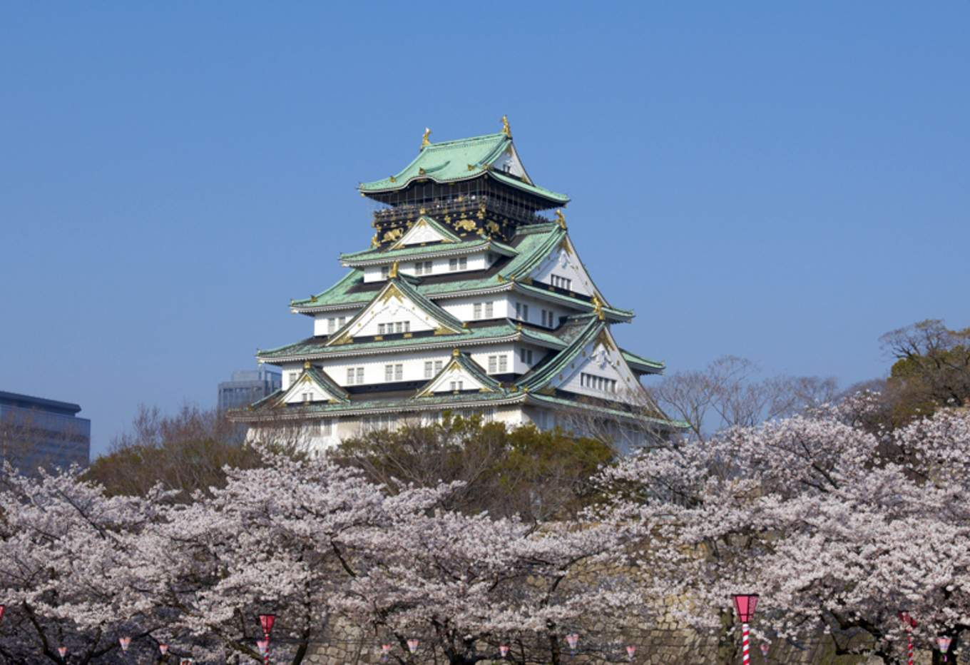 Osaka Castle Tower is a representative building in Osaka, and it is beautiful with the flower season. (Image taken from gazoo.com)