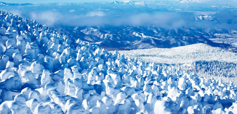 藏王樹冰,圖片取自www.kankou.yamagata.yamagata.jp。