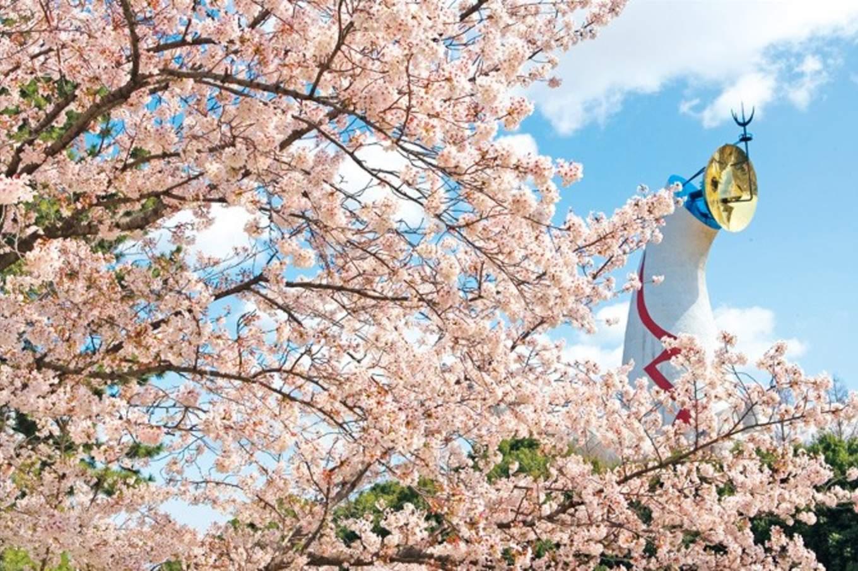 被櫻花樹包圍的太陽之塔。(圖片取自handler.travel)