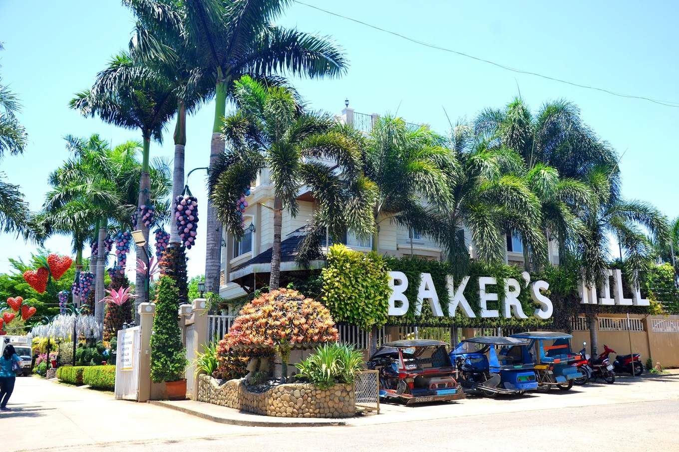 圖片取自https://nicerioadventures.blogspot.com/2018/02/palawan-bakers-hill.html