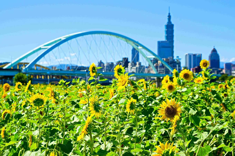 圖片取自台北市政府工務局水利工程處網站