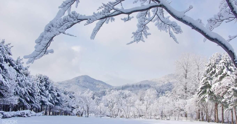 snow korea